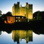 Bunratty Castle & Folk Park