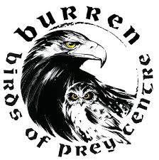 burrenbirds