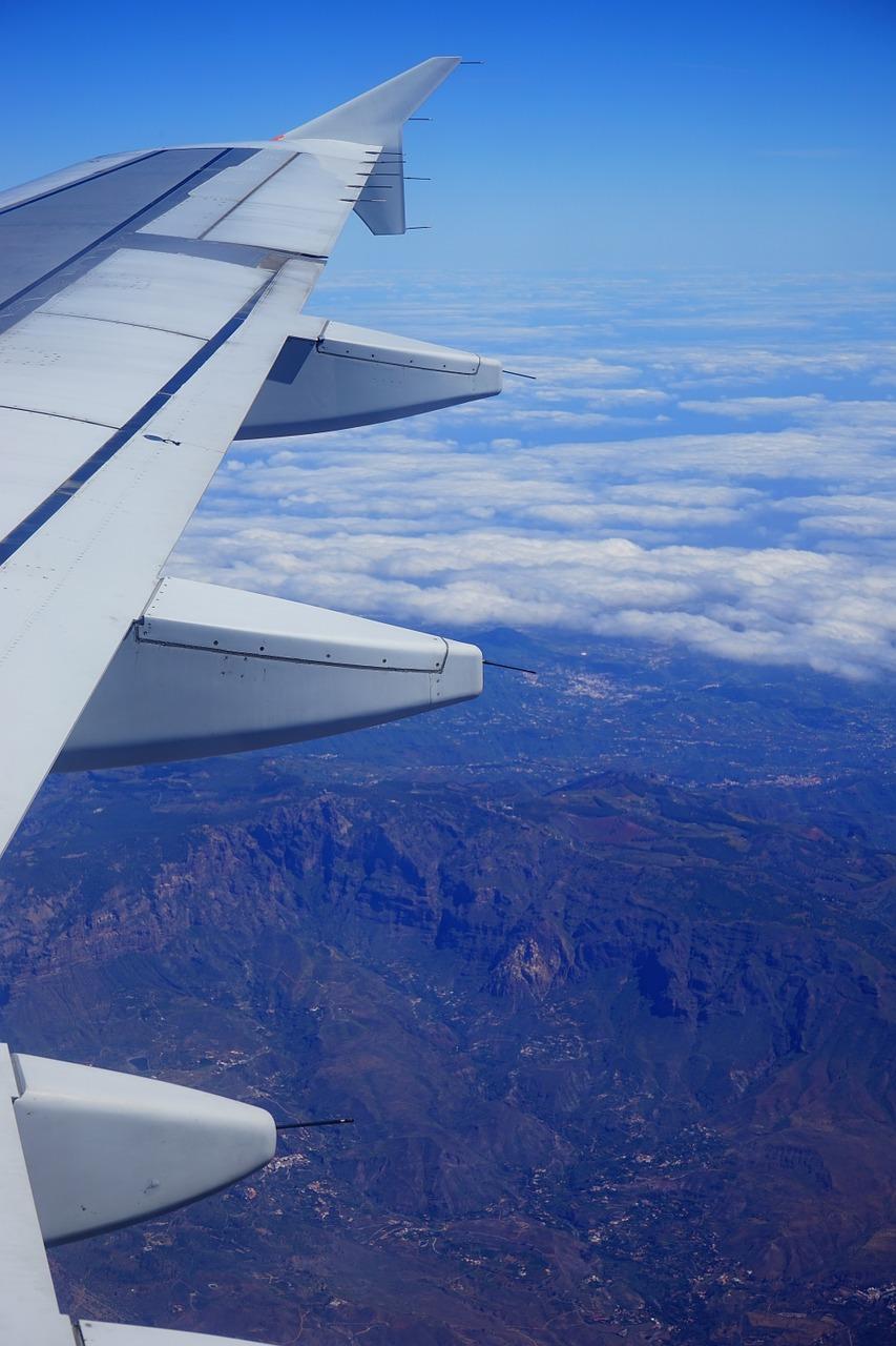 fly-375428_1280