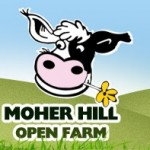 Moher Hill Open Farm