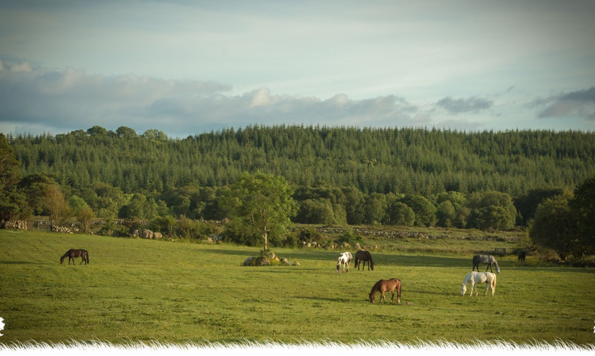 slieve-aughty-centre-landscape-1200x719