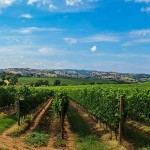 Toddler Friendly Activities, Tuscany